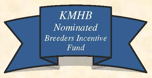 Kentucky Miniature Horse Breeders Club